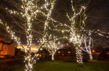 Wylam Lights 2016